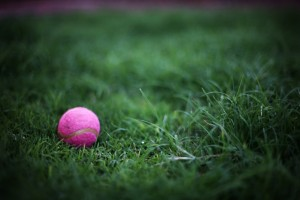 31 Days of PINK~Day 30 Part 2 With Allison from Allison Waken Photography