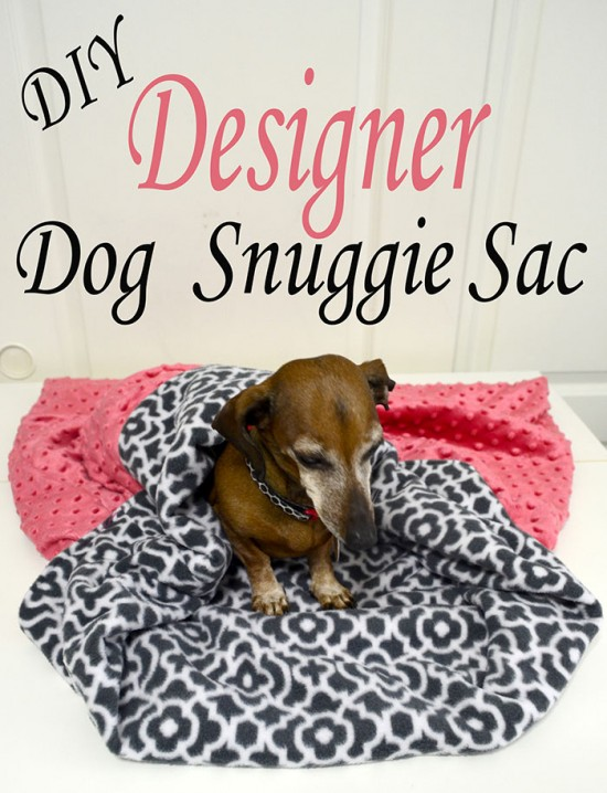 dog snuggie sac hero