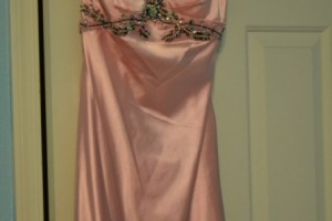 Prom Dress Fit for a Royal Princess!
