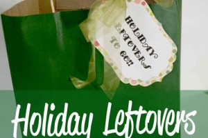 Holiday Leftovers To Go Kit! Perfect for those Turkey Day leftovers!!