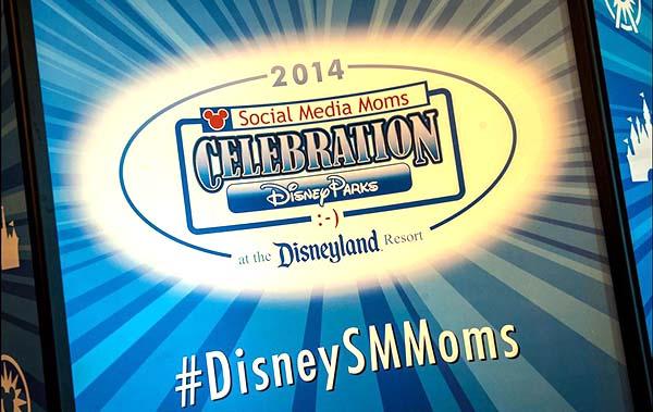 DSMM-logo