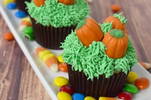 Pumpkin Patch Cupcake Tutorial