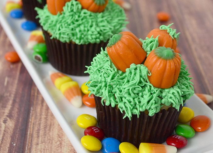 pumpkin patch cupcakes feature