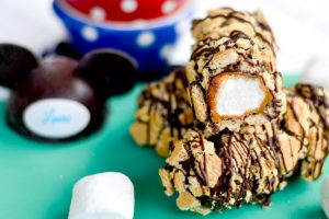 Disneyland Marshmallow S'Mores  Wands