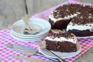 Pioneer Woman 11 Container Chocolate Cake